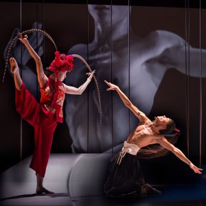 Holland Dance Festival: Talent on the Move